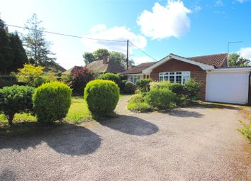 Thumbnail 3 bed detached bungalow for sale in Hastings Road, Battle