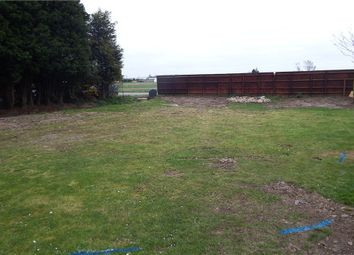 Thumbnail Land for sale in Newgate Road, Tydd St. Giles, Wisbech