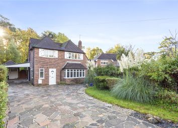 Thumbnail 4 bed detached house for sale in Beech Ride, Sandhurst, Berkshire
