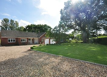 Thumbnail 5 bed detached bungalow for sale in Chequers Road, Tharston, Norwich