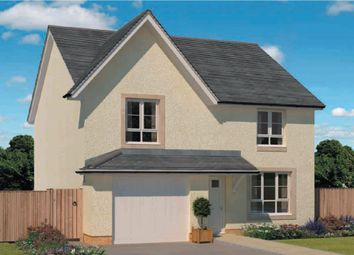 "Thumbnail 4 bed detached house for sale in ""Rothesay"" at Rowan Street, Wishaw"