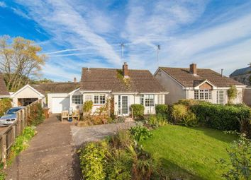 Thumbnail 2 bed detached bungalow for sale in Cheriton Fitzpaine, Crediton