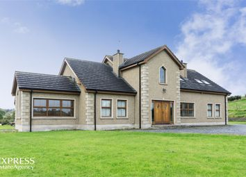 Thumbnail 6 bed detached house for sale in Cladymore Road, Mowhan, Armagh