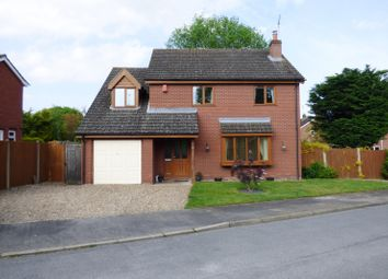 Thumbnail 4 bed detached house for sale in Dell Close, Newton Flotman