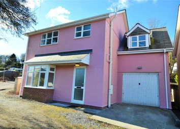 Thumbnail 4 bed detached house to rent in Dart Bridge Road, Buckfastleigh, Devon
