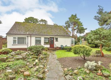 Thumbnail 3 bed detached bungalow for sale in Shoemakers Lane, Swaffham