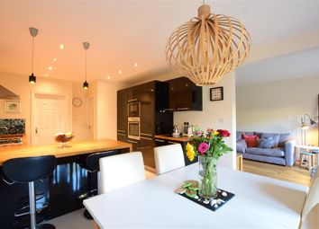 Thumbnail 4 bed bungalow for sale in Ettrick Road, Chichester, West Sussex