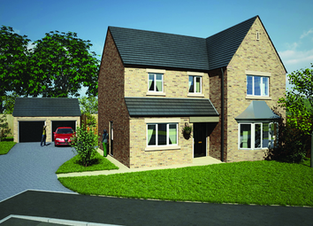 Thumbnail 4 bedroom detached house for sale in The Willerby, Longlieve Gardens, Pilsley, Derbyshire