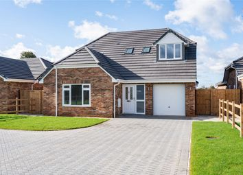 Thumbnail 4 bed detached house for sale in Ash Lane, Down Hatherley, Gloucestershire