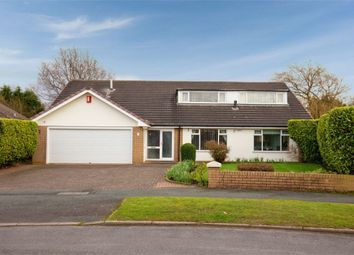 Thumbnail 5 bed detached bungalow for sale in Naples Drive, Newcastle, Staffordshire