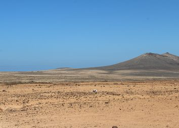 Thumbnail Land for sale in Triquivijate, Fuerteventura, Spain