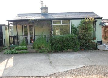 Thumbnail 3 bedroom detached bungalow to rent in Widford Road, Much Hadham