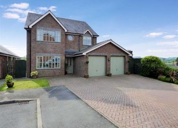 Thumbnail 4 bed detached house for sale in Berllan Deg, Llansantffraid