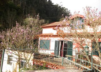 Thumbnail 4 bed detached house for sale in Santo António Da Serra- Machico, Santo António Da Serra, Machico, Madeira Islands, Portugal