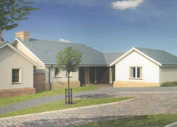 Thumbnail 3 bed bungalow for sale in Molesworth Way, Holsworthy