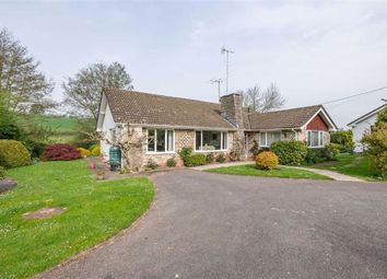 Thumbnail 3 bedroom bungalow for sale in Llangwm, Near Usk, Monmouthshire