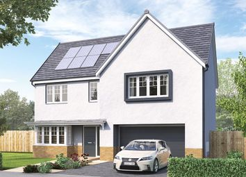 "Thumbnail 4 bed detached house for sale in ""The Welbury"" at Aurs Road, Barrhead, Glasgow"