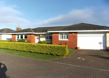 Thumbnail 4 bed detached house to rent in Turnberry Avenue, Dumfries
