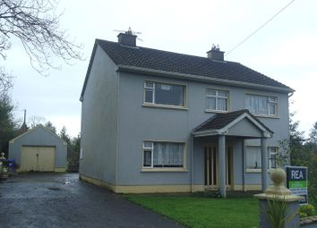 Thumbnail 4 bed detached house for sale in Drumarigna, Ballinamore, Leitrim