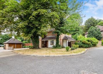Thumbnail 5 bed detached house for sale in Woodford, Green, Essex