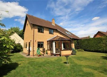 Thumbnail 4 bed detached house for sale in Feast Close, Fordham, Ely