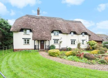 Thumbnail 4 bed detached house for sale in Whatcombe Lane, Winterborne Whitechurch