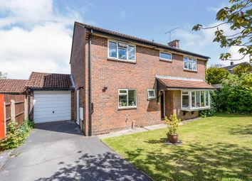 Home Field, Romsey SO51, south east england property
