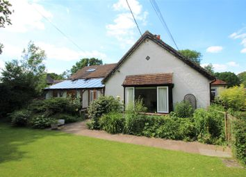 Thumbnail 4 bed property to rent in Cranleigh Road, Ewhurst, Cranleigh
