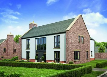 Thumbnail 5 bed detached house for sale in Berry Pomeroy, Totnes