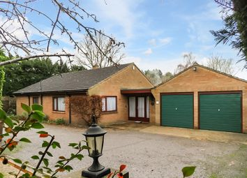 Thumbnail 3 bedroom detached bungalow for sale in Poplar Avenue, Norwich