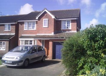 Thumbnail 4 bed semi-detached house to rent in Oakwood, Broadmayne