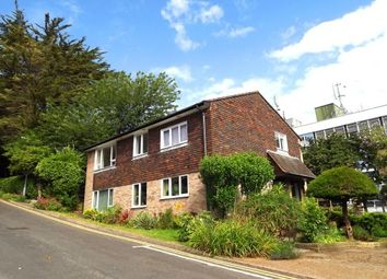 Thumbnail 3 bed maisonette to rent in Leahurst Court Road, Preston, Brighton