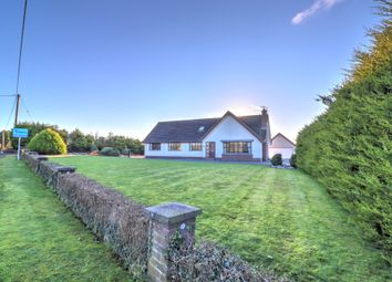 Thumbnail 5 bed detached house for sale in Ballybuttle Road, Millisle, Newtownards