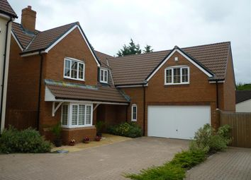 Thumbnail 4 bed detached house to rent in Hazel Brook Gardens, Bristol