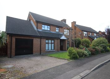 Thumbnail 3 bed detached house to rent in Glebe Manor, Newtownabbey
