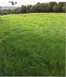 Thumbnail Land for sale in Garnswllt Road, Pontarddulais, Swansea, City And County Of Swansea.