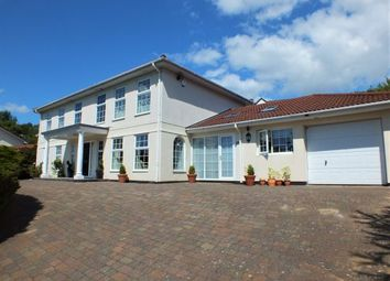 Thumbnail 4 bed detached house for sale in River Walk, Braddan, Douglas, Isle Of Man