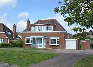 Thumbnail Detached house to rent in Elsted Road, Bexhill-On-Sea, East Sussex