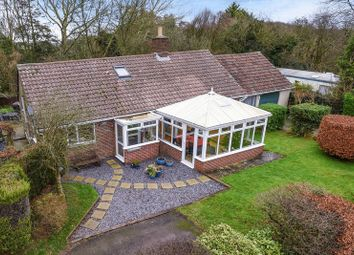 Thumbnail 3 bed bungalow for sale in Stinsford, Dorchester