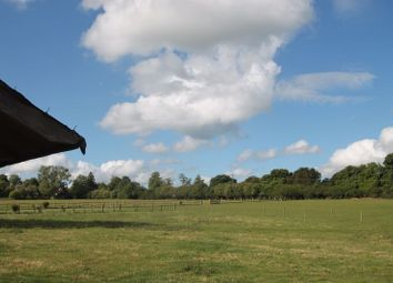 Thumbnail 2 bed equestrian property for sale in Burrows Lane, Gomshall, Guildford