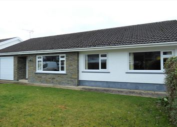 Thumbnail 3 bed bungalow to rent in Penygraig Drive, Templeton, Narberth