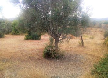 Thumbnail Land for sale in 8005 Santa Bárbara De Nexe, Portugal