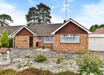 Thumbnail 3 bed detached bungalow for sale in Windlesham, Surey