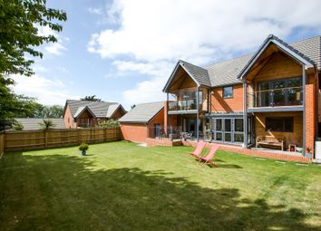 Thumbnail 4 bed detached house for sale in Portsea View, Bedhampton, Havant