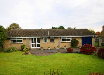 Thumbnail 3 bedroom detached bungalow for sale in Follynook Lane, Ranskill, Nottinghamshire