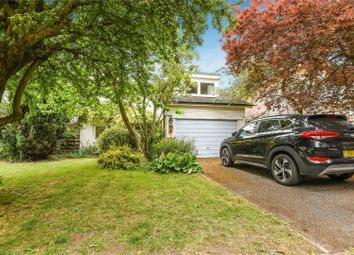 Thumbnail 4 bed detached house to rent in Martingales Close, Richmond, Petersham