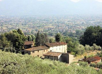 Thumbnail 13 bed property for sale in Lucca Via Delle Ville, Lucca, Tuscany, Italy