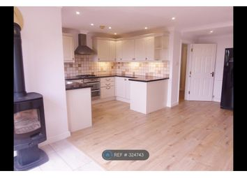 Thumbnail 4 bed semi-detached house to rent in Seymour Road, Newton Abbot
