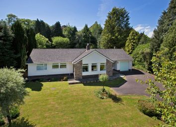 Thumbnail 4 bed detached bungalow for sale in Ashley, Tiverton