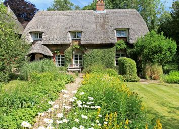 Thumbnail 3 bed cottage for sale in Wellhouse Cottage, Wellhouse Road, Beech, Alton, Hampshire